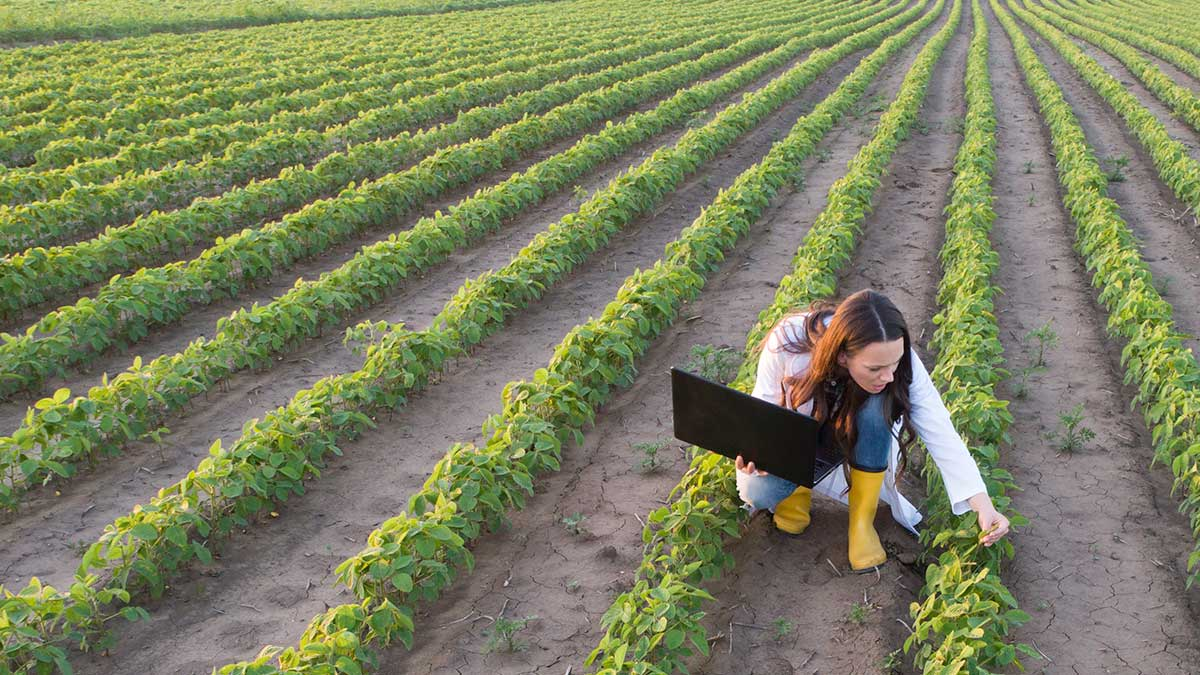 Improving Food Yield with Advanced Analytical Testing for Fertilizers and Agrochemicals